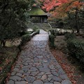 Photos: 法然院・振り返りの山門3