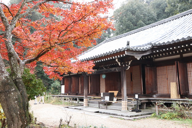 浄瑠璃寺・本堂1