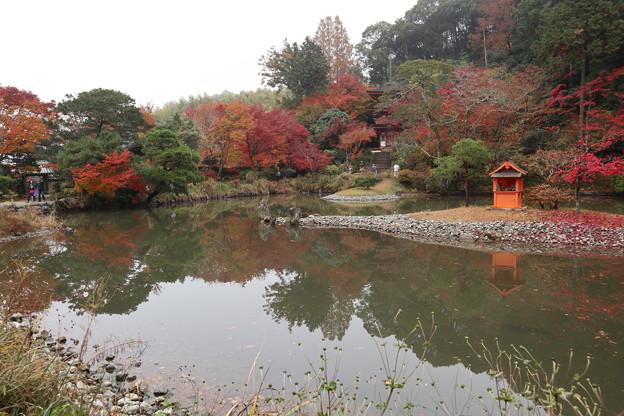 浄瑠璃寺庭園6