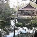 南禅院・曹源池3
