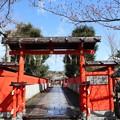 Photos: 車折神社・神門