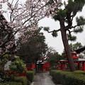 Photos: 車折神社・裏参道2