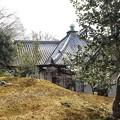 Photos: 霊鑑寺・本堂の上のお庭