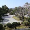 Photos: 友禅苑・鹿野苑1