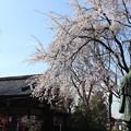 Photos: 松ヶ崎大黒天・絵馬堂2