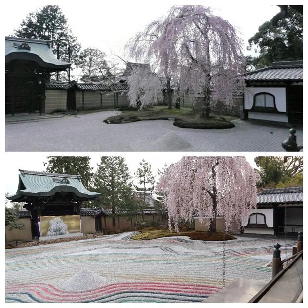高台寺のお庭 12年ひと昔