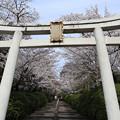 Photos: 宗忠神社・第一鳥居2