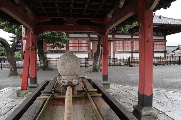 東寺・手水舎