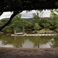 京セラ美術館・日本庭園1