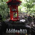 Photos: 野宮神社・稲荷社1