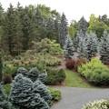 真鍋庭園・ヨーロッパガーデン2