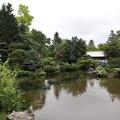 真鍋庭園・日本庭園2