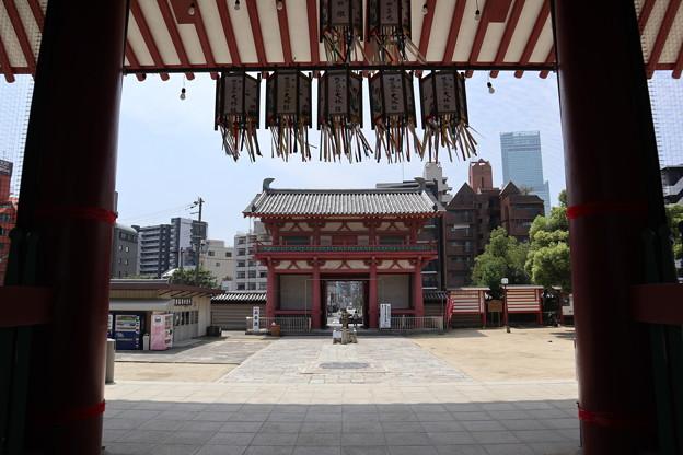 Photos: 四天王寺・中門より南大門