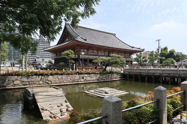 四天王寺・亀の池