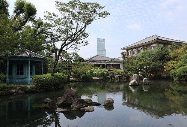 四天王寺・本坊庭園3