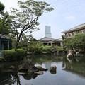 Photos: 四天王寺・本坊庭園3