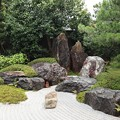 Photos: 霊源院・庭園「鶴鳴九皐」6