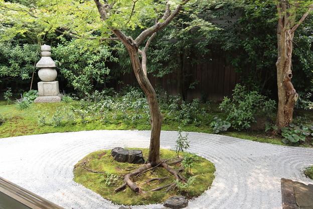 霊源院・庭園「鶴鳴九皐」(南庭)4
