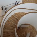 京セラ美術館・中央ホール(螺旋階段)2