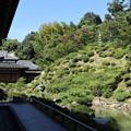 Photos: 智積院・庭園2