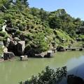 智積院・庭園4