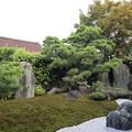 黄梅院・作仏庭2