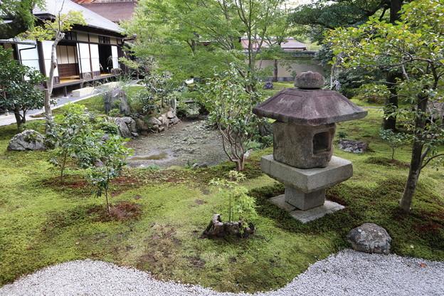 Photos: 黄梅院・直中庭(瓢箪池)1
