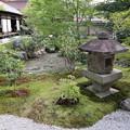黄梅院・直中庭(瓢箪池)1