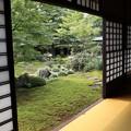 黄梅院・直中庭5