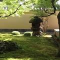 黄梅院・前庭3