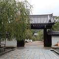 Photos: 醍醐寺・総門