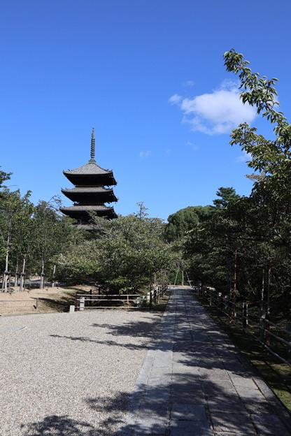 仁和寺・五重塔3