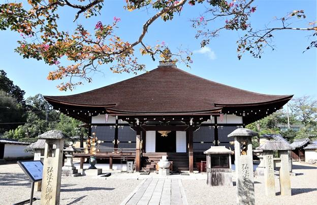 仁和寺・御影堂1