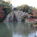 永保寺庭園(梵音巌)3