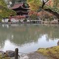 永保寺庭園(観音堂)2