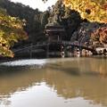 Photos: 永保寺庭園(無際橋)2