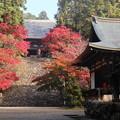 Photos: 神護寺・金堂を見上げる2