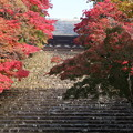 Photos: 神護寺・石段より金堂2