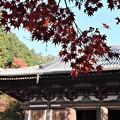 Photos: 神護寺・金堂1