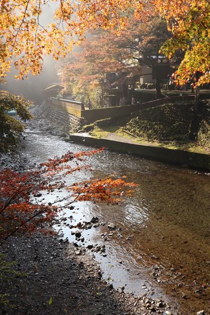 Photos: 清滝川1