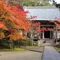 Photos: 西明寺・本堂1
