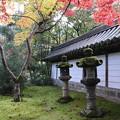 Photos: 西明寺・石灯篭3