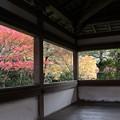 Photos: 西明寺・渡り廊下1