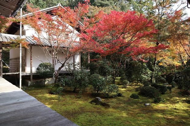 西明寺・庭園2