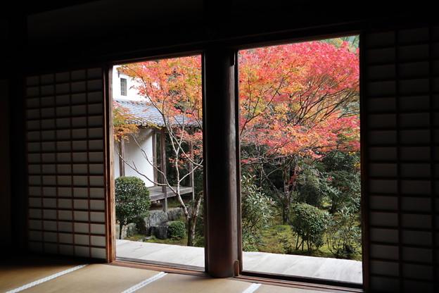 西明寺・本堂より庭園