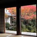 Photos: 西明寺・本堂より庭園