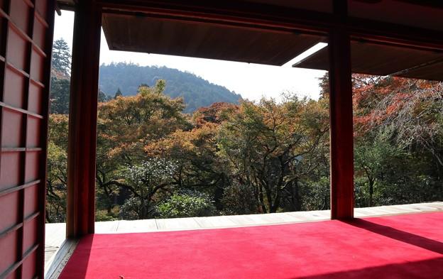 高山寺・・石水院(南縁)5