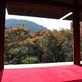 Photos: 高山寺・石水院(南縁)5