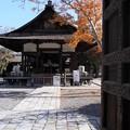 Photos: 下御霊神社・拝殿1