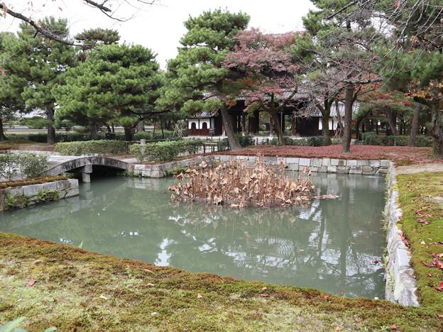 建仁寺・放生池